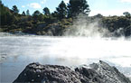 Rotorua Reveals Anti-warming Weapon