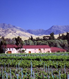 Isabel Estate Shows off Its Wines in America