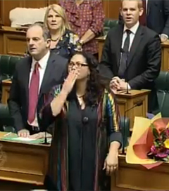 NZ Parliament Passes Same-sex Marriage Bill, Breaks into Song