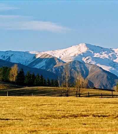 #172: Kiwis Rocking the World