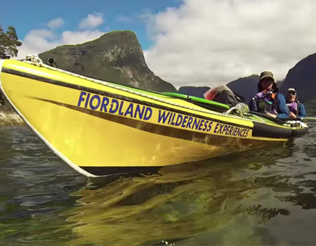 Living a Kiwi Life – Ep.31 – Kayaking Doubtful Sound with Dolphins
