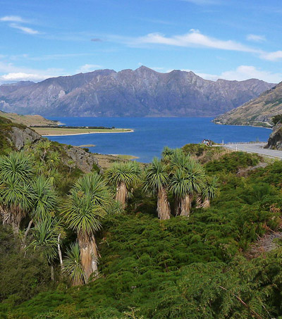 5 Stunning South Island Must See's