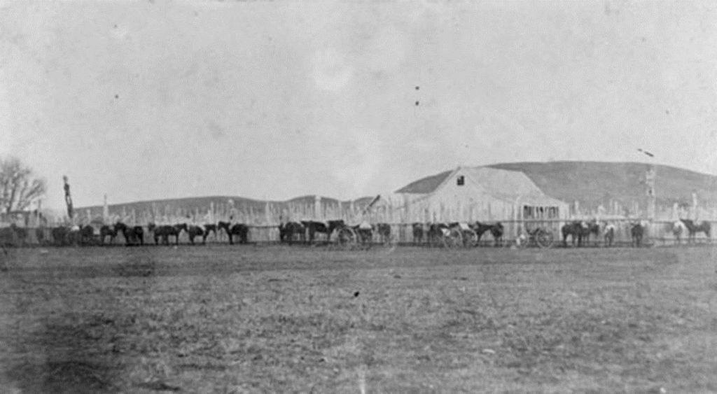 Tareha's whare at Waiohiki 1860's