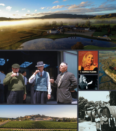 A Celebration of Hawke's Bay's History of Winemaking