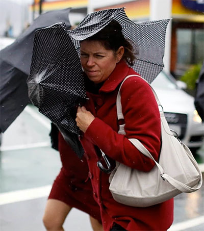 Wrestling with Wellington's Wild Weather