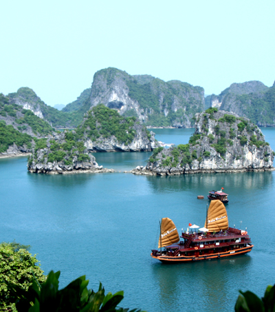 Air New Zealand to Launch Direct Flights to Vietnam