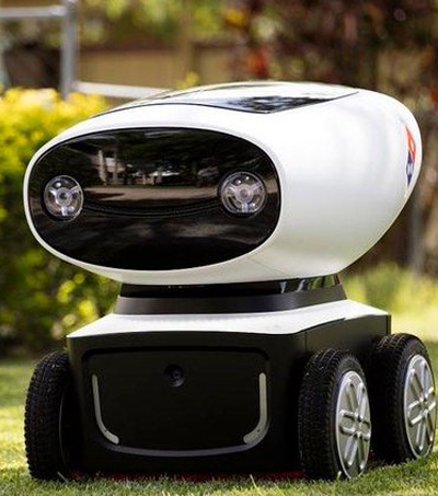 New Zealand & Domino's Working on Driverless Pizza Delivery Trial
