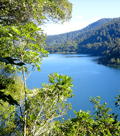 Personhood Designation Granted to Te Urewera