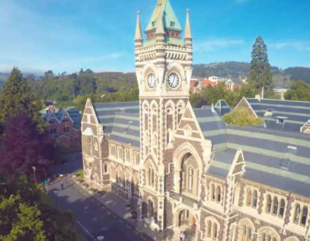 Dunedin from Above