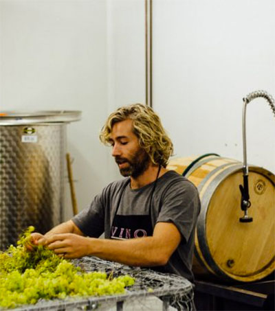 Renegade Winemaker Josh Hammond's First Vintage