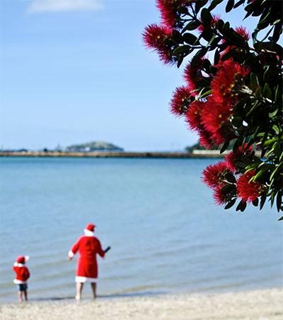 Southern Hemisphere Christmas Variations