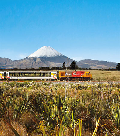 New Zealand's Glory From a Train Window