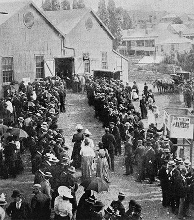 Celebrating 125 Years of the Female Vote in NZ