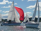 Sailing Event Makes NZ