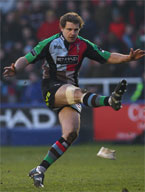 Harlequins Hero
