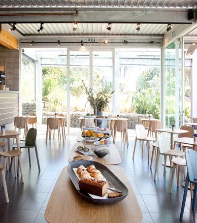 Innovative Auckland Food Businesses Meet the Criteria