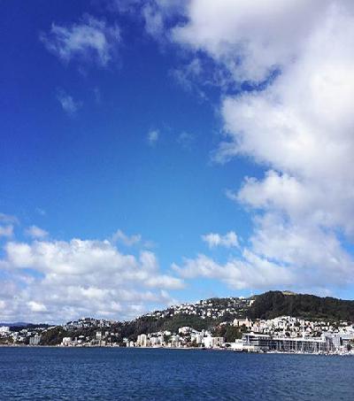 Vogue's 15 Must Visit Spots in Wellington