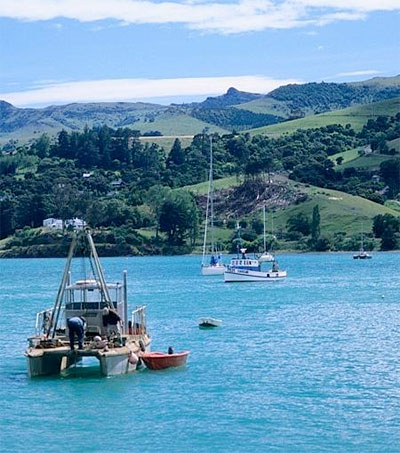 Lonely Planet's Top Eight Must-See NZ Port Destinations