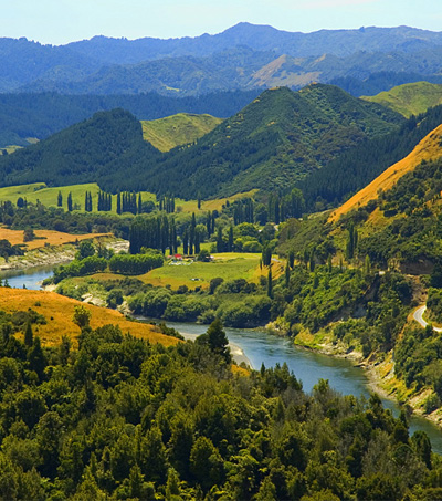 The tide turns in New Zealand's favour