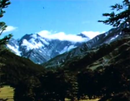 Wildlife of the Mountains (1958)