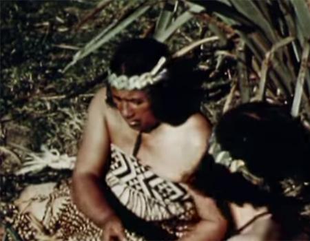 New Zealand Flax (1950)