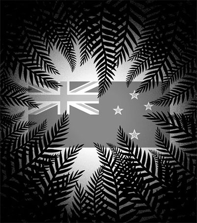 Steve Braunius Cuts to the Chase about the Flag