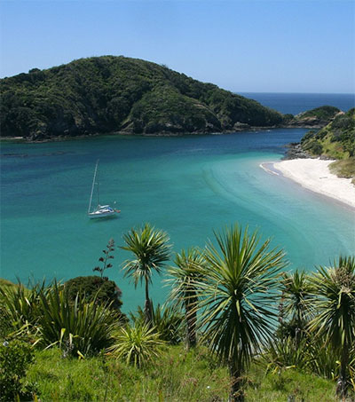 Top Locations to Visit in New Zealand