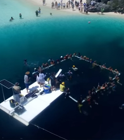 Free Diver Sets Two World Records in Three Days