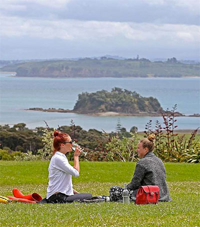On a Culinary Discovery in New Zealand
