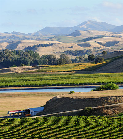 Drink and be Merry in Wairarapa