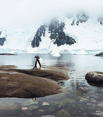 Adventurer Captures Antarctica Through iPhone Lens