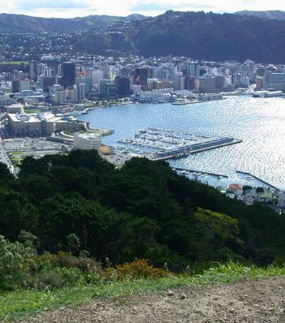 Fun Things To Do In Wellington