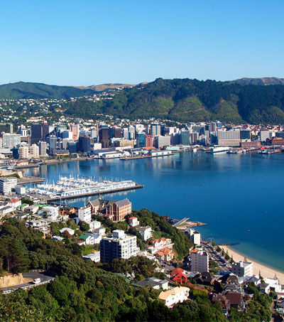 48 Hours In Wellington