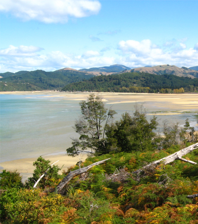 How to Visit New Zealand's Favorite National Park