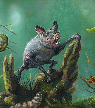 Extinct Giant Burrowing Bat Fossil Found in NZ