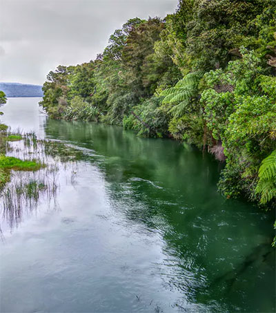 Ways to Better Water Quality in NZ Lakes and Rivers