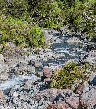 Hollyford Track in NZ One of Best Walking Holidays