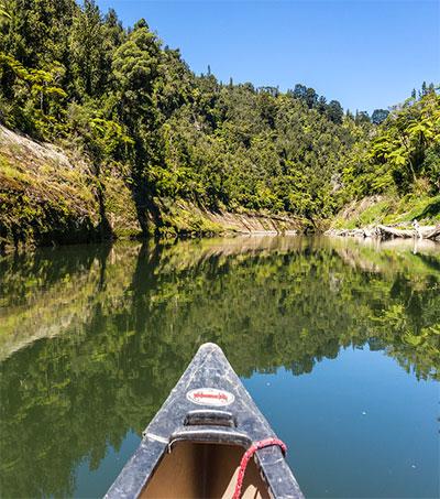 Exploring the Jurassic Park-Like Whanganui River
