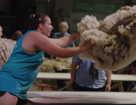 She Shears Trailer