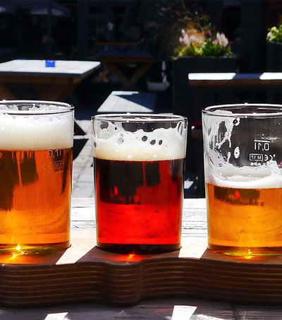 New Zealand Enters the Craft Beer Game