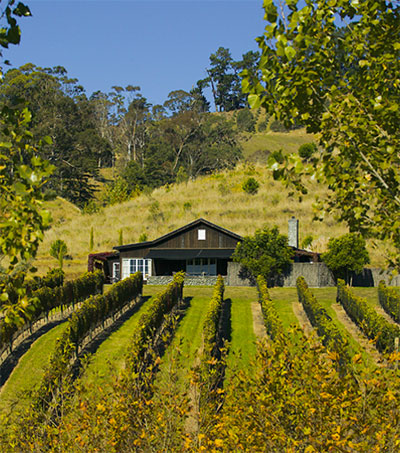 Wine Lovers Guide to Hawke's Bay